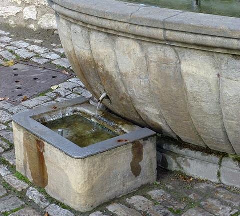 Weimar-Lese | Hundetränken an Weimars Brunnen